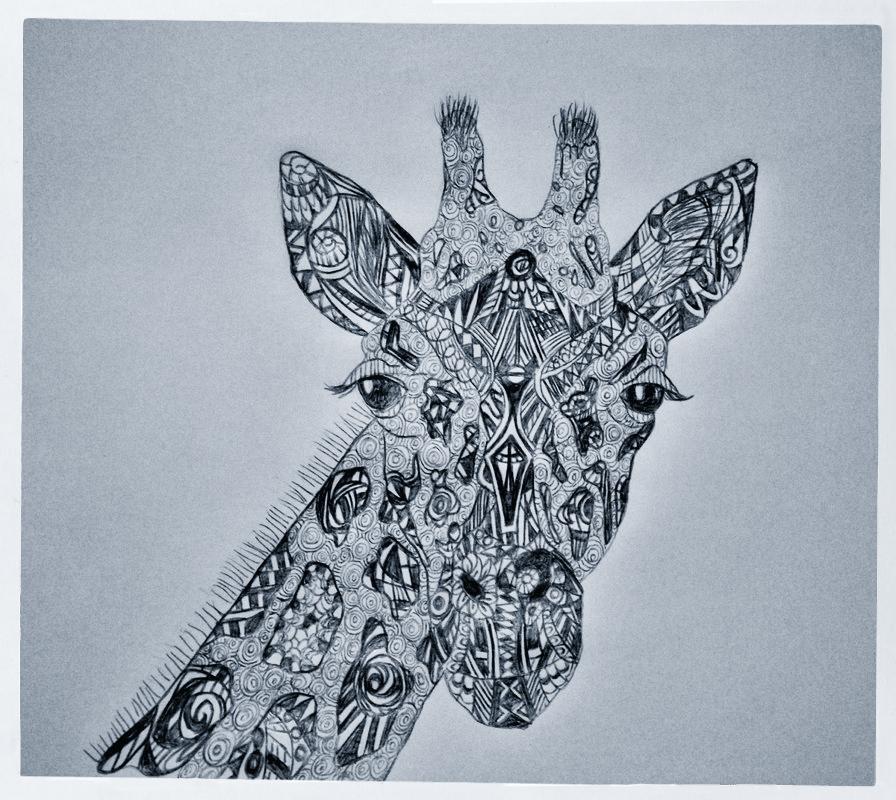 giraffe_cnv
